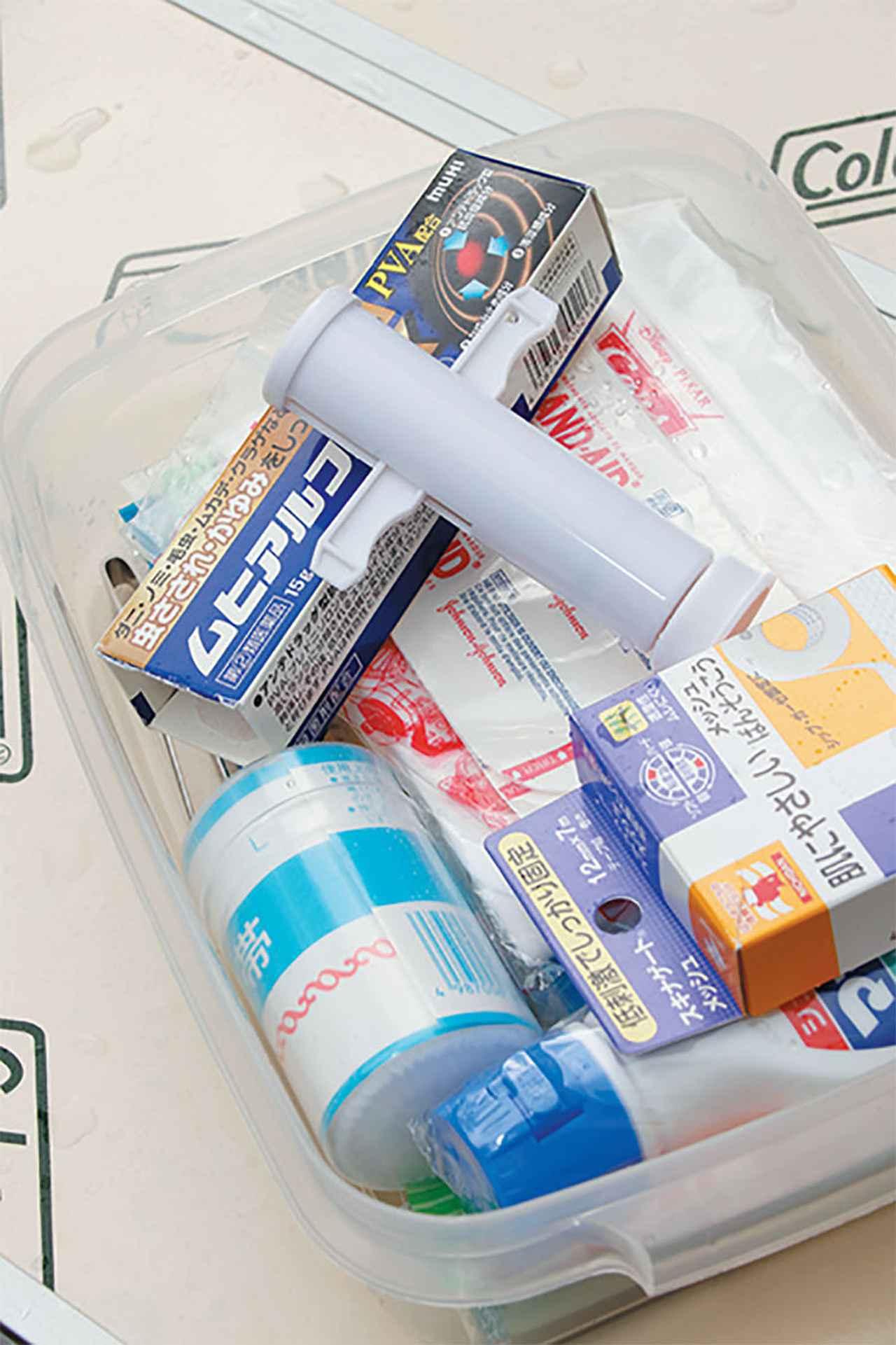 画像: ステロイド軟膏やポイズンリムーバーは必携。