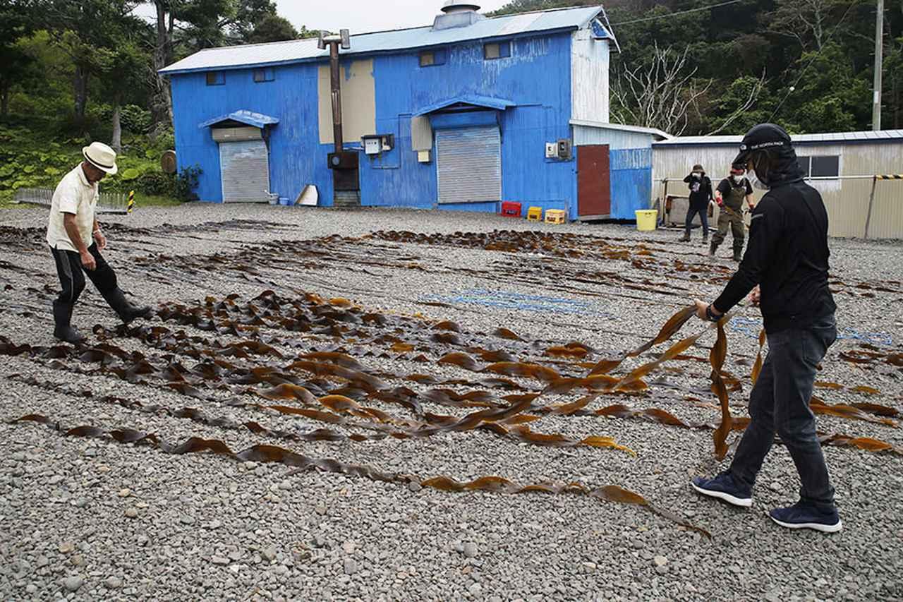 画像3: 昆布漁の時期にアルバイト募集!