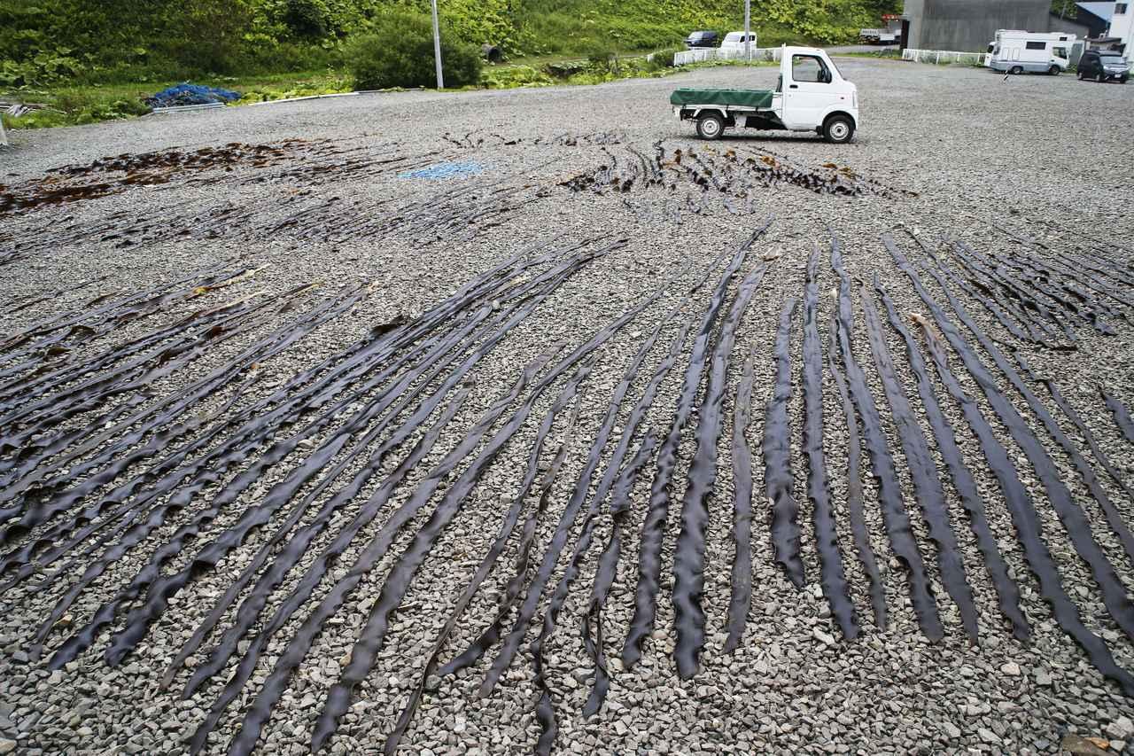画像1: 絶品の海の幸に出合った北海道クルマ旅