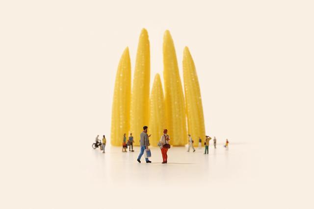 画像: 「成長し続ける建築」