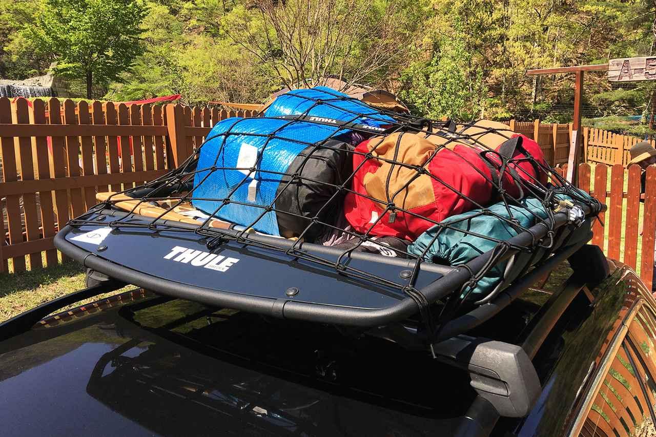 画像3: ワンコと一緒にキャンプへ