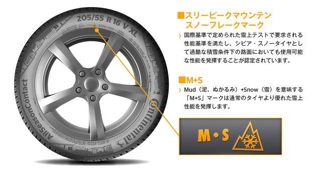 画像7: 【Continental Tires】「AllSeasonContact」を日本で発売