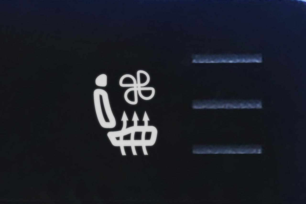 画像2: パサート ヴァリアント TDI エレガンス アドバンス