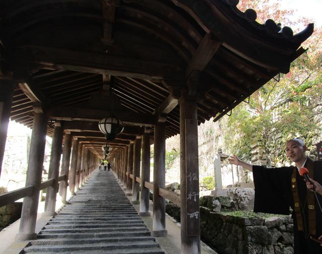画像: 上・中・下の三廊に分かれている登廊。階段の段数はなんと399段!