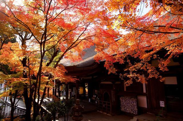 画像: 第十三番札所石山寺の紅葉