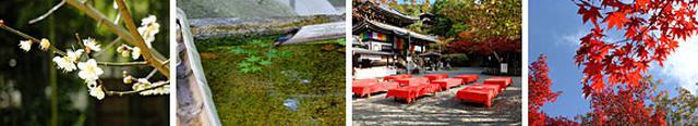 画像: 今熊野観音寺