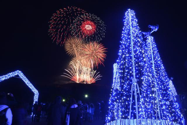 画像: 最終日の2月14日(金)には、「奈良公園バースデー花火」の打ち上げも(2019年の様子)