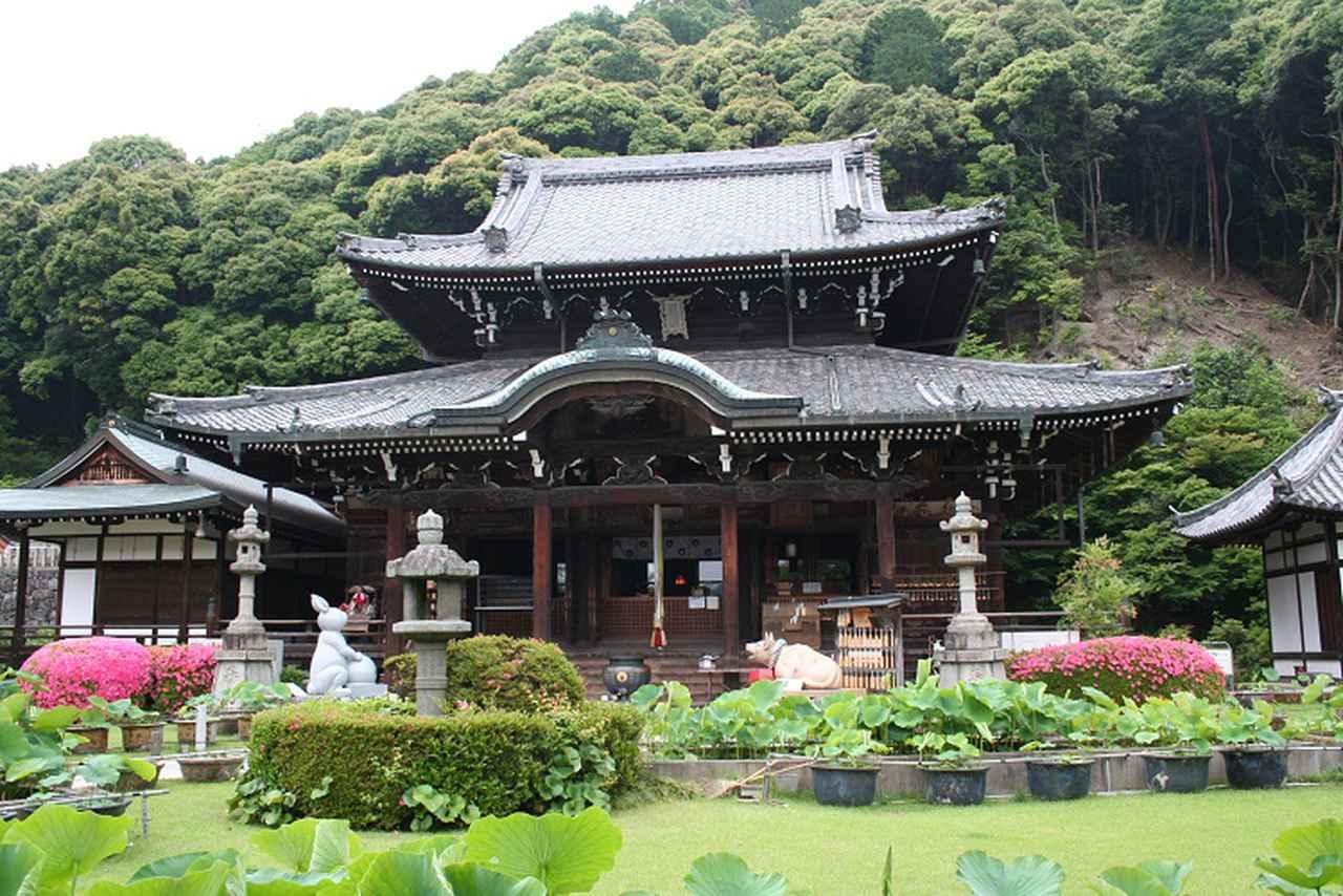 画像: 第10番札所「明星山 三室戸寺」をご紹介しました
