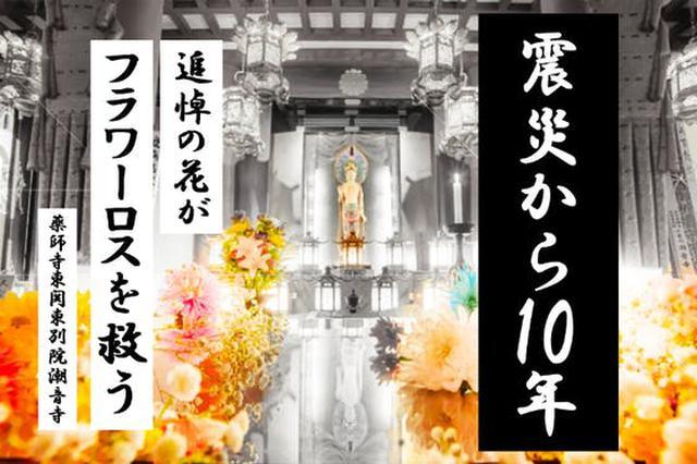 画像: フラワーロスを救いたい! 3.11被災地のお寺から祈りと希望を届ける「花あかり」