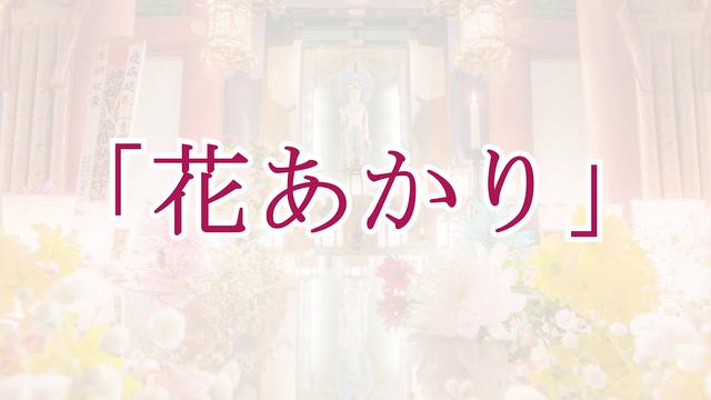 画像: 3.11潮音寺花あかり告知動画【拡散希望】 youtu.be