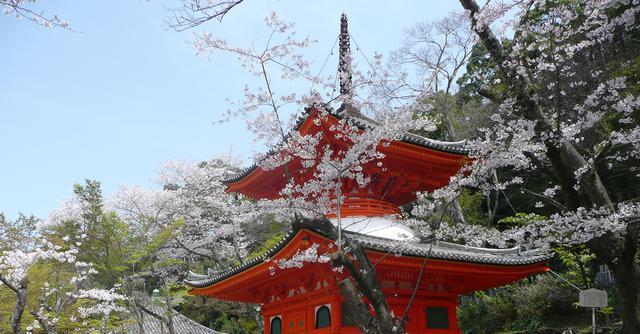 画像: 紀三井寺