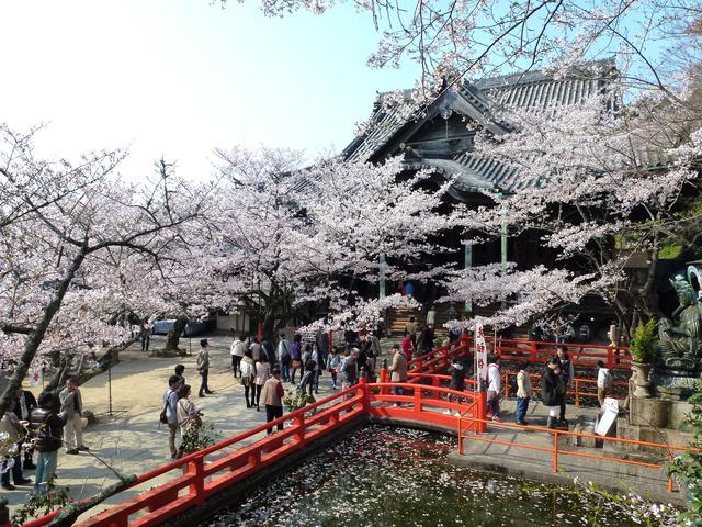 画像: 第2番札所「紀三井山 金剛宝寺」(紀三井寺)をご紹介しました