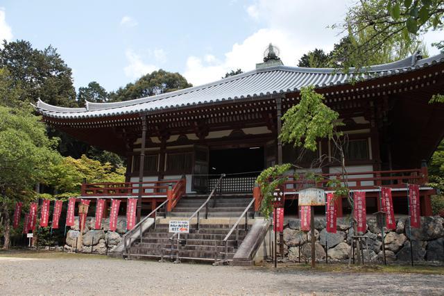 画像: 花まつり&第11番札所「醍醐寺」をご紹介しました