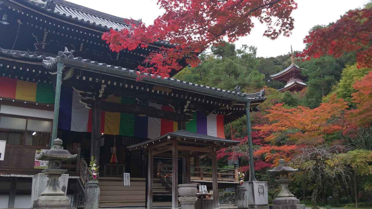 画像: 第15番札所「新那智山 今熊野観音寺」をご紹介しました