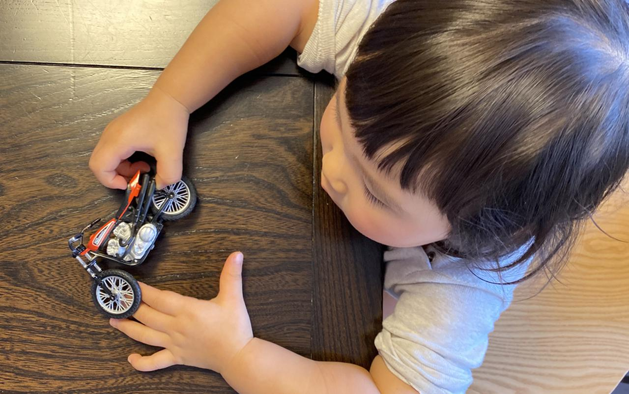 画像: モーターサイクルに限らず広く様々な体験をしてほしいところですがすでに親の因果で色々偏りが・・・。