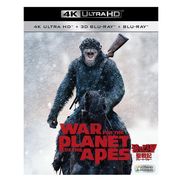 画像: 今週発売のBDソフト一覧[2018.02.11-02.17]『猿の惑星:聖戦記』『アナベル 死霊人形の誕生』他