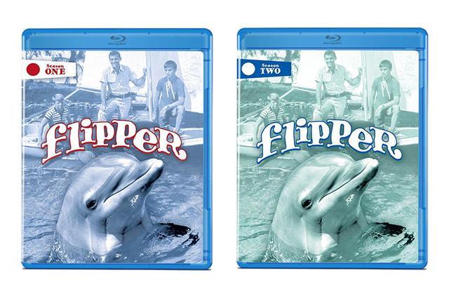 画像: 映画番長の銀幕旅行 8/16公開:懐かしのテレビドラマがBlu-ray化 『わんぱくフリッパー』 シーズン1&2