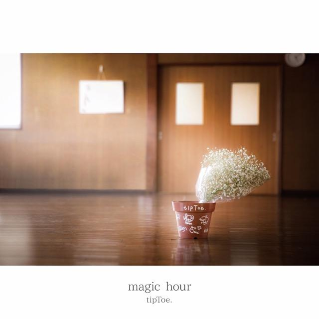 画像: magic hour / tipToe.