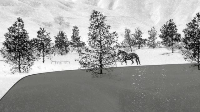 画像: 24 Frames | Trailer | New Release www.youtube.com