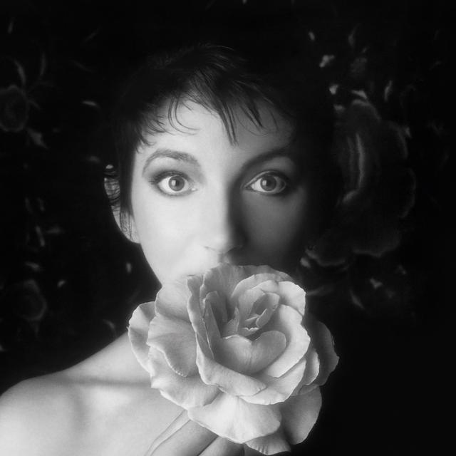 画像: Remastered Pt. II / Kate Bush