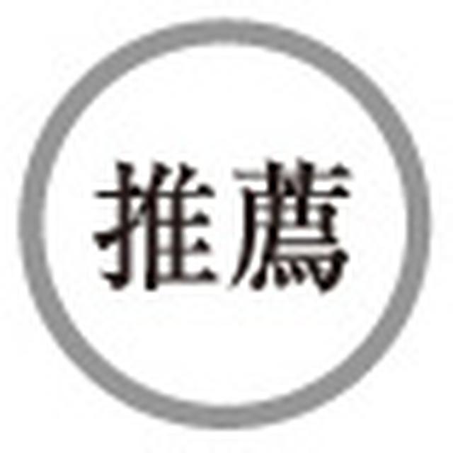 画像4: 【HiVi冬のベストバイ2018 Special Site】アザーコンポーネンツ部門 第2位 ヴェクロス SSB-380S