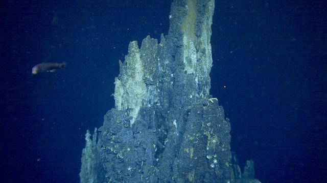 画像: 「ビッグチムニー」と呼ばれる深海の絶景ポイント (c)NHK/JAMSTEC