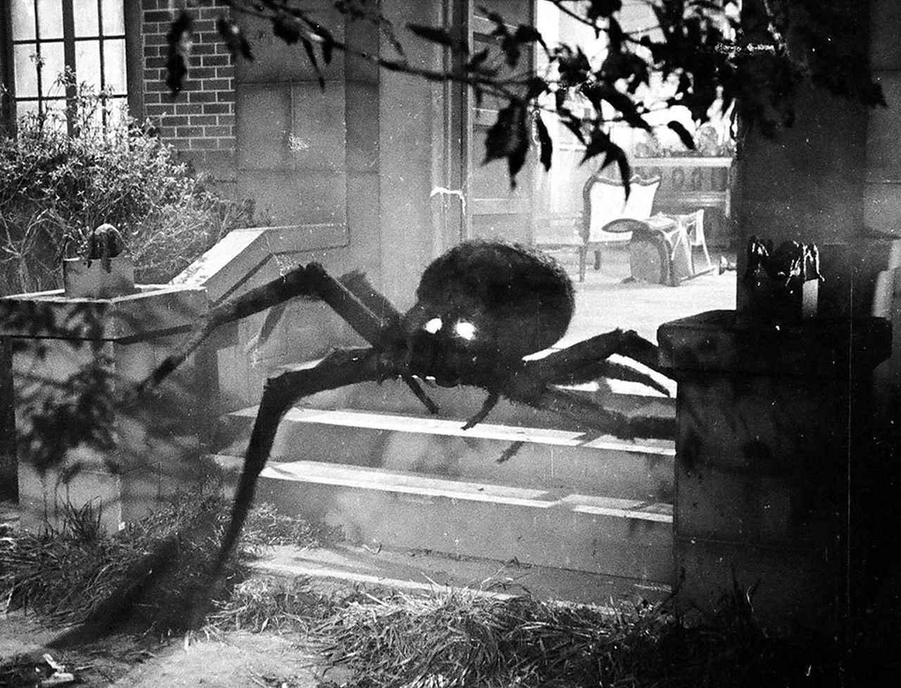 画像: 第9話「クモ男爵」より。©TSUBURAYA PRODUCTIONS CO., LTD.
