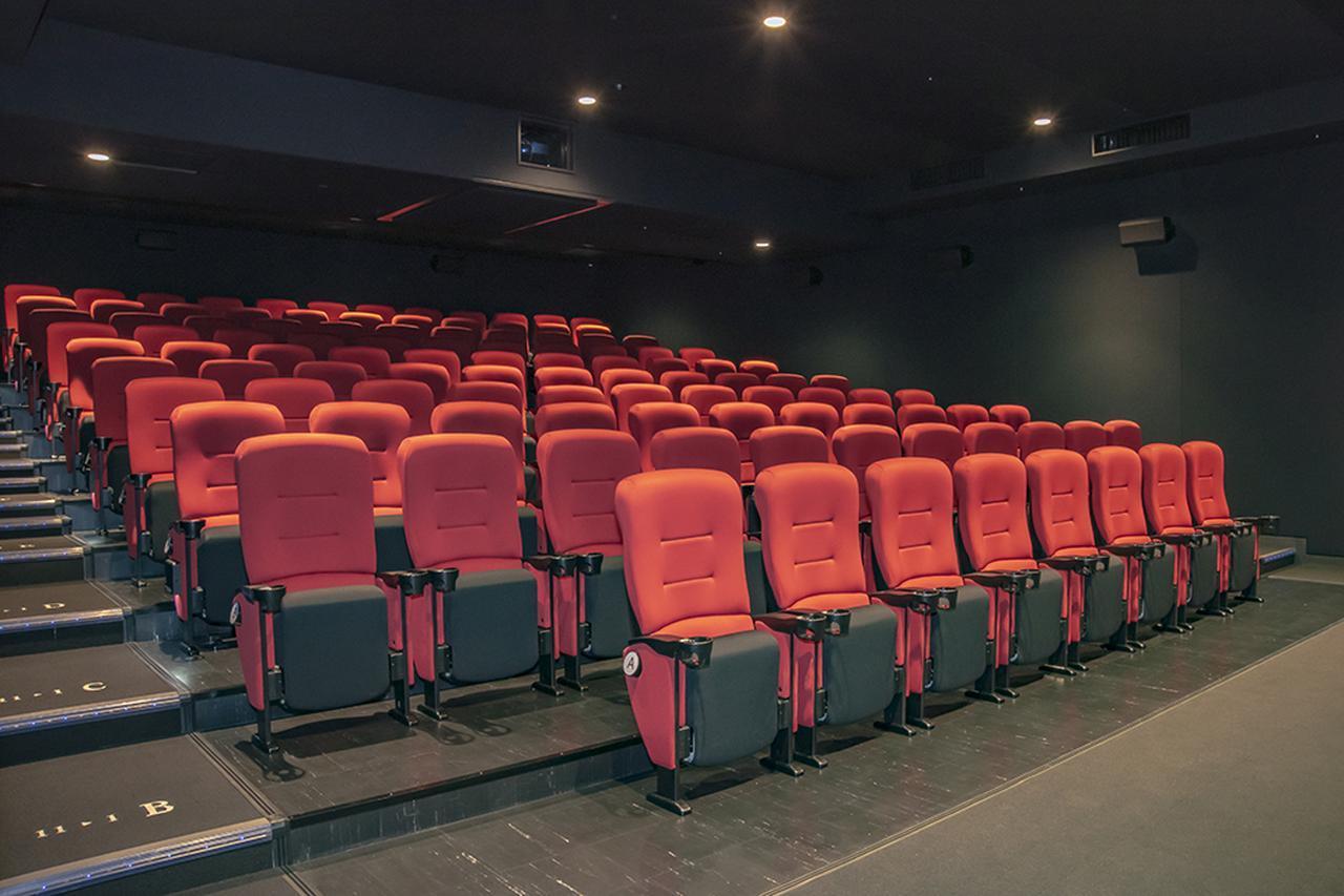 画像: シートは左右に肘掛けとドリンクホルダーが付いた、ゆったりとしたサイズが並んでいる。シートの前後の間隔も広く取られており、足を伸ばして映画を楽しめる