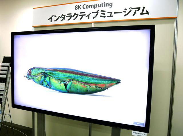 画像: ▲参考展示されていた70V型の8Kタッチディスプレイ(同上)。表示されているのは、およそ23K相当の静止画