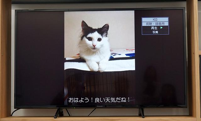画像: コメント付き写真をディガーで受信・再生したイメージ