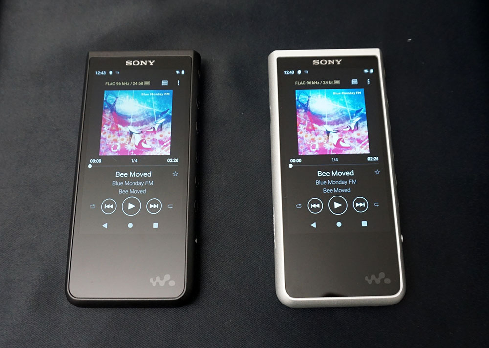 画像: 「NW-ZX500」シリーズも3.6インチのモニターを搭載する。カラリングはブラックとシルバーの2色