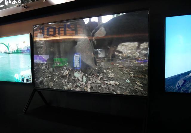 画像: ▲中央にはソニーの海外製8Kモデル(98インチ)を展示。左右は65型