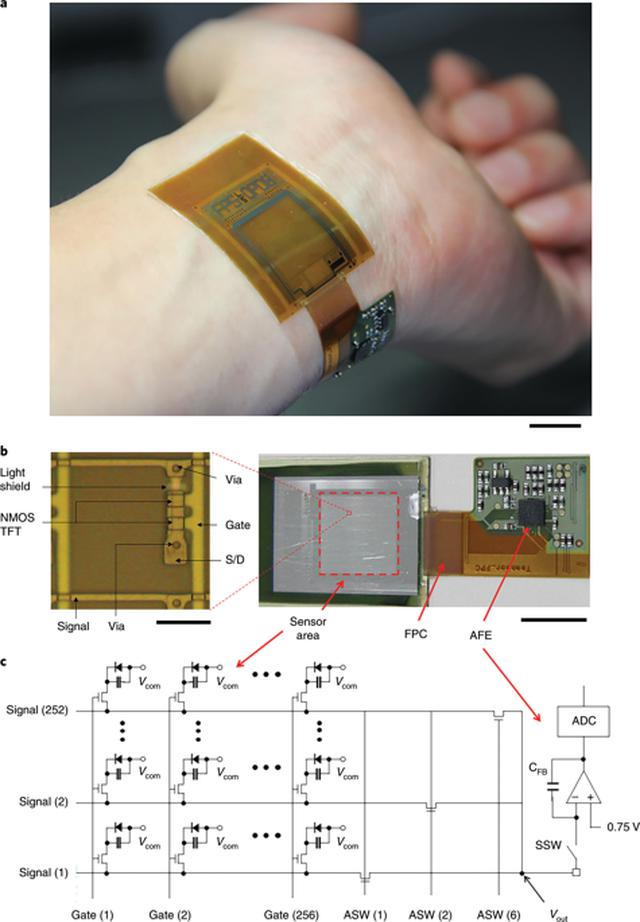 画像: A conformable imager for biometric authentication and vital sign measurement