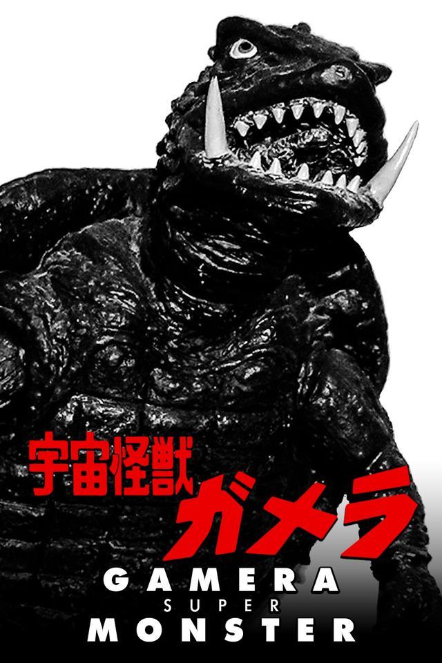画像: 宇宙怪獣ガメラ 1980 監督:湯浅憲明 出演:マッハ文朱  小島八重子