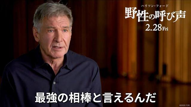 画像: 映画『野性の呼び声』特別映像 2月28日(金)公開 youtu.be
