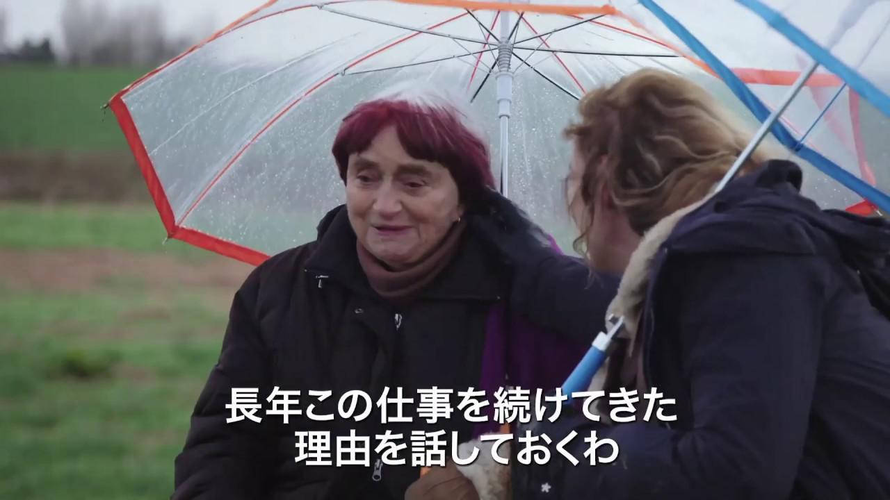 画像: 映画『アニエスによるヴァルダ』『ラ・ポワント・クールト』『ダゲール街の人々』予告編 www.youtube.com