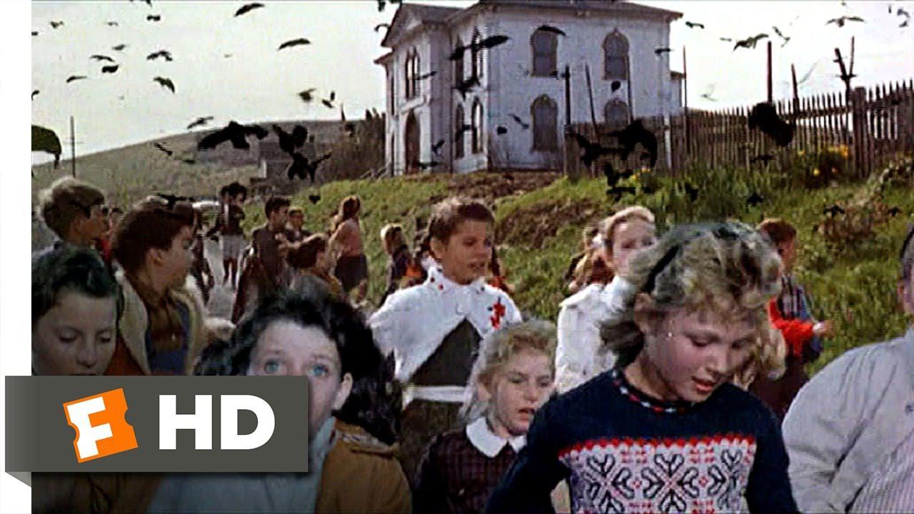 画像: Crows Attack the Students - The Birds (6/11) Movie CLIP (1963) HD www.youtube.com