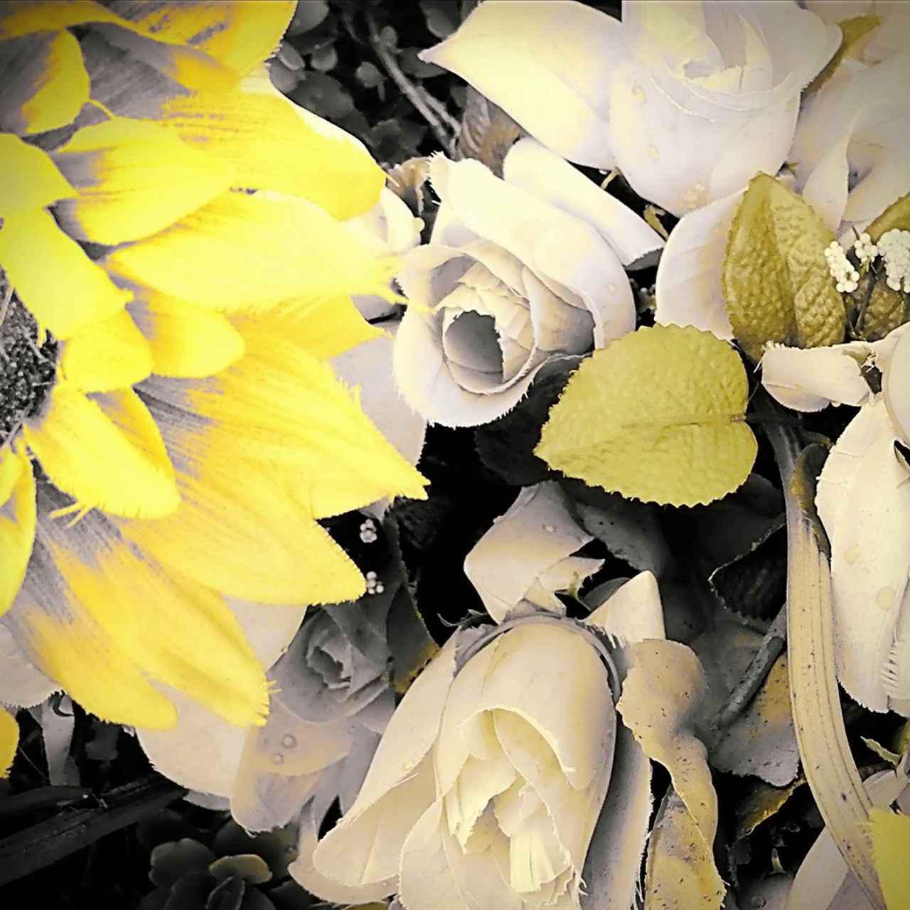 画像: 霞んだ昨日、雫の中の明日 / 窪田渡