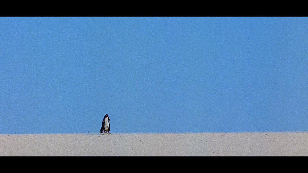 画像9: screen capture