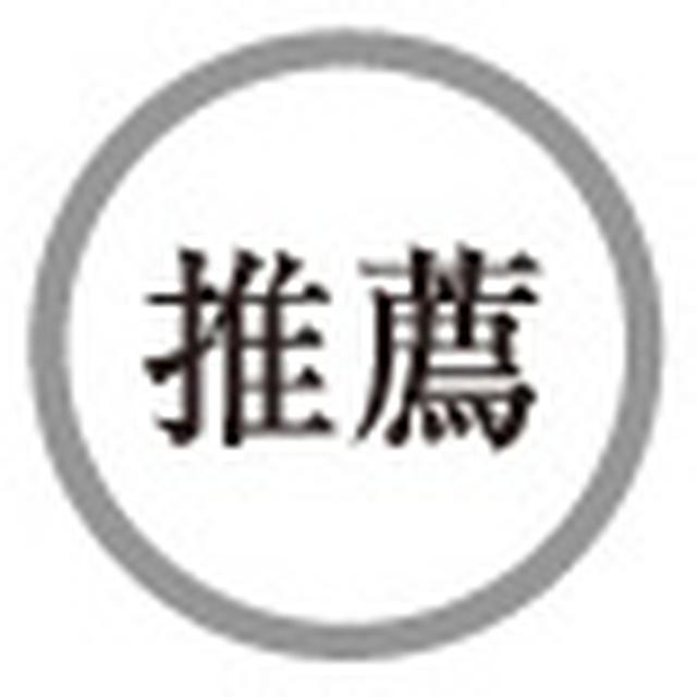 画像6: 【HiVi冬のベストバイ2020 特設サイト】スピーカー部門(1)〈ペア10万円以下〉、同部門(3)〈ペア20万円以上40万円未満〉 第1位 ソナス・ファベール Lumina I、Lumina III
