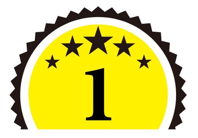 画像1: スピーカー部門(6)〈ペア100万円以上200万円未満〉 第1位 ソナス・ファベール Olympica NOVA V