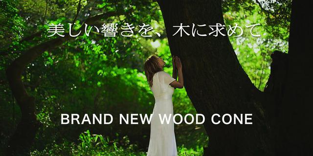 画像: WOOD CONEトップ | Victor