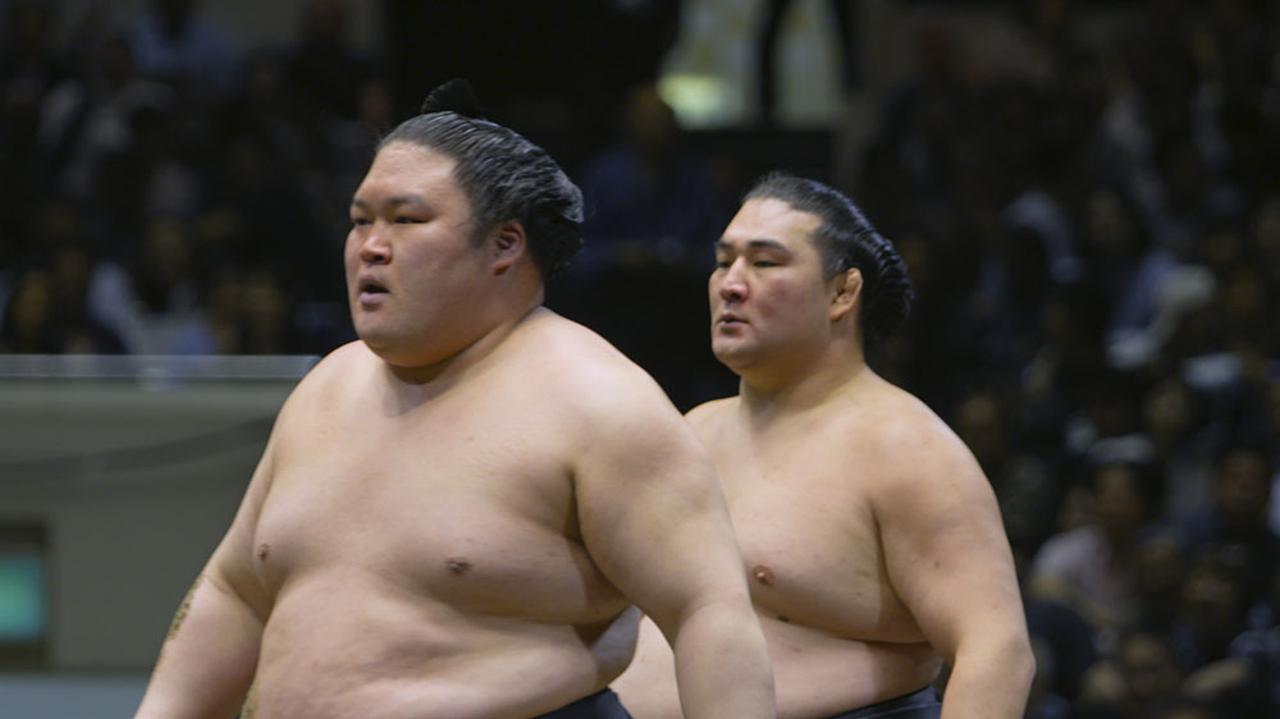 明日 取組 大相撲 の