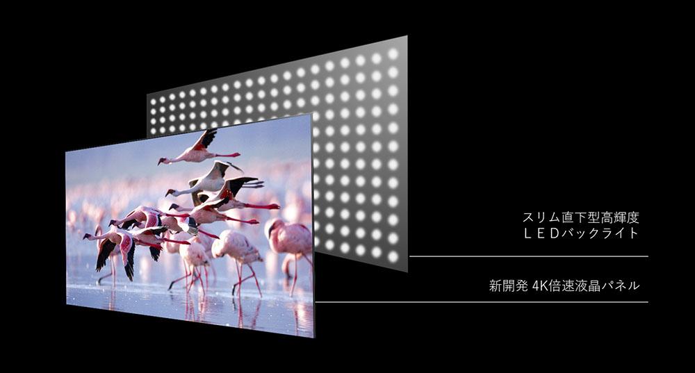 画像: Z670Kシリーズは、スリム直下型高輝度LEDバックライトを搭載した4K液晶パネルを搭載