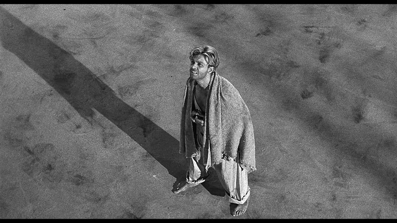 画像4: ジャック・アーノルド 主演作品『縮みゆく人間』【クライテリオンNEWリリース】