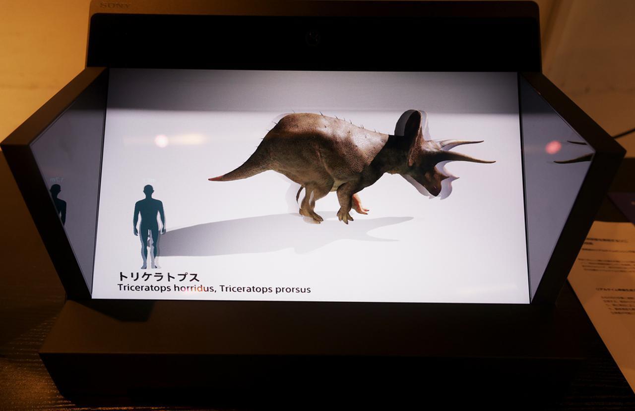 画像: (C)DinoScience 恐竜科学博製作委員会