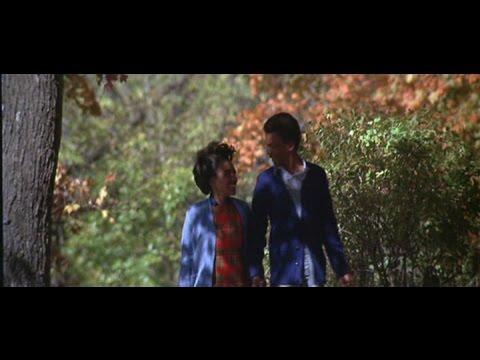 画像: Preview Clip: The Learning Tree (1969, starring Kyle Johnson, Mira Waters, Alex Clarke) www.youtube.com