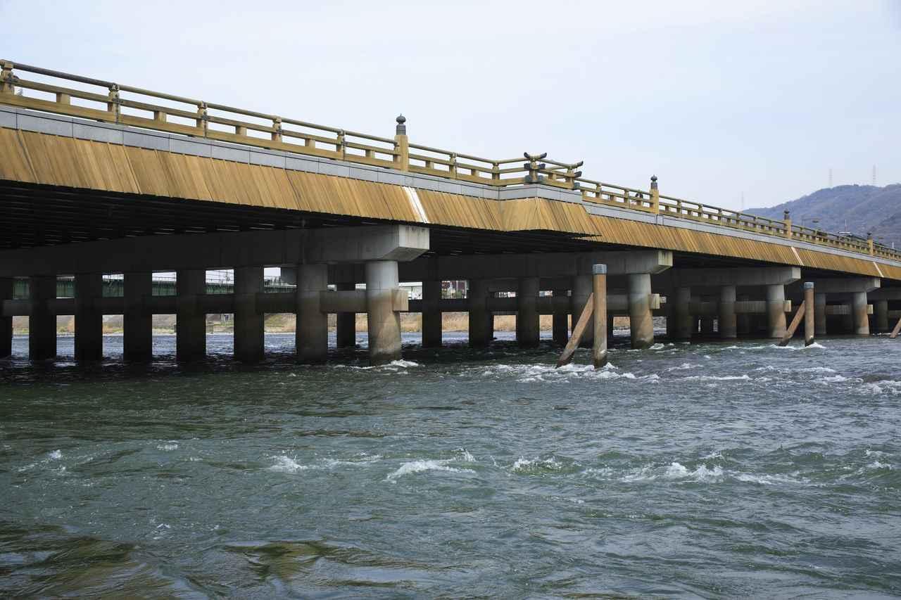 画像: 宇治川のほとりを散歩