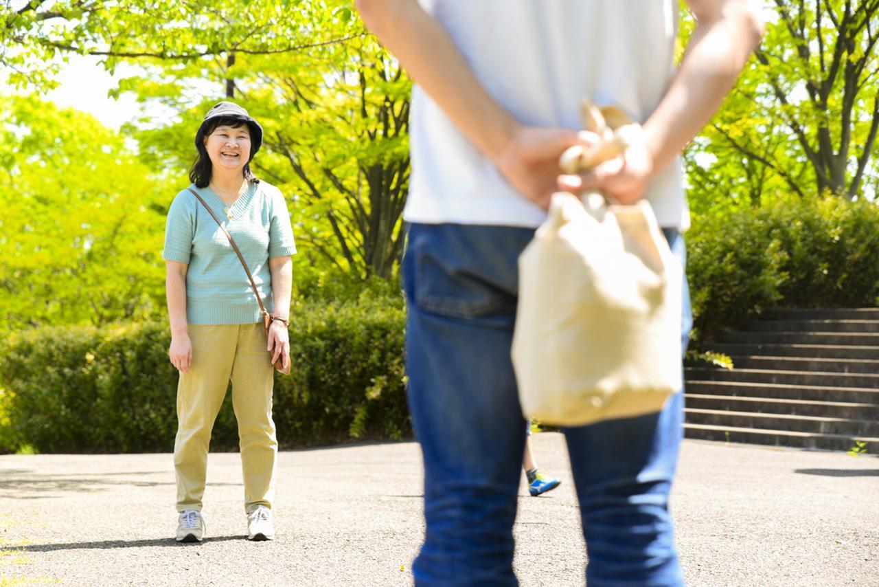 画像1: 春の訪れを感じる、新緑が美しい近所の公園