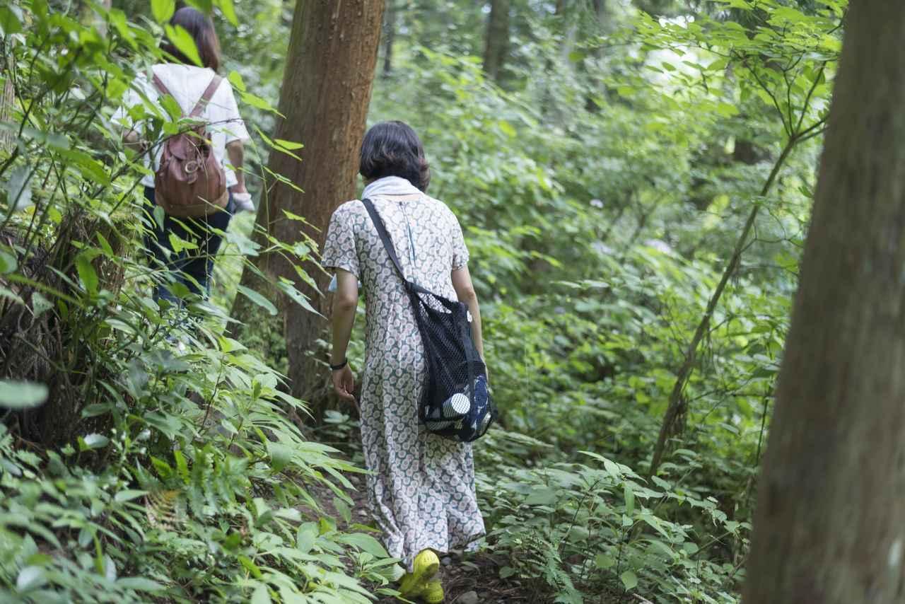 画像1: 近くには、より涼を感じる多摩川の清流が!